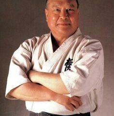 51ee423ef38d381370ffb28d833e0261--kyokushin-karate-martial-artist