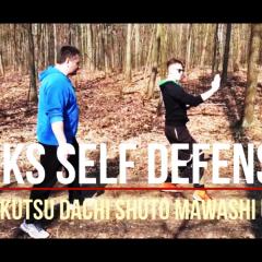 kokutsu dachi